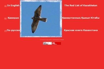 Кредит 24 — казахстанский сервис